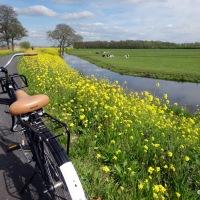 Kinderdijk... à vélo